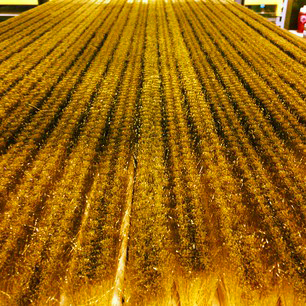 Fields of Gold: take shape in the form of brass strip brushes