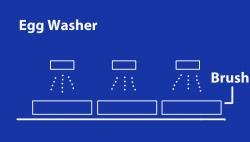 Egg Washer